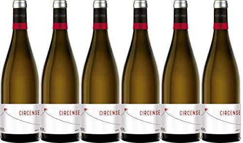 Circense Verdejo Vino Blanco D.O Rueda, Pack de 6 Botellas de 750 ml (Total: 4.5L) Bodega Cuatro Rayas