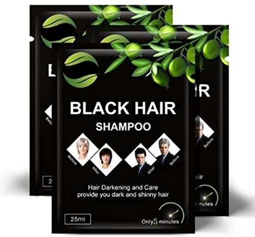 WELL4U - Black Hair Shampoo - Shampoo gegen graue Haare - Schwarzes Haarshampoo zur Grauabdeckung - Ist Ihre natürliche Haarfarbe schwarz? Möchten sie Ihre schwarze Haarfarbe zurück?