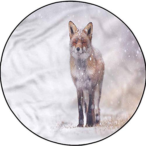 Fox Anti-Static Rug Easy-Care Indoor/Outdoor Area Rug Rural Field Snow Stormy Diameter 43.3 in(110cm)