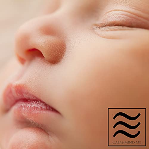 Baby Shusher Sound