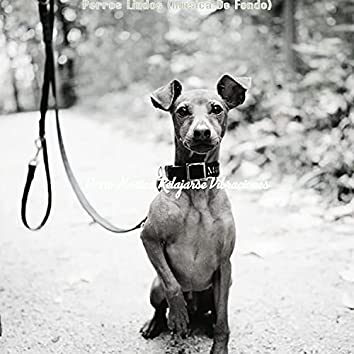 Perros Lindos (Musica De Fondo)