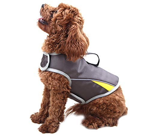 WINBATE Adjustable Dog Anxiety Jacket-Keep Calming Vest Thunder Shirt with D-Ring and Training Handle for Small Dogs,Gary