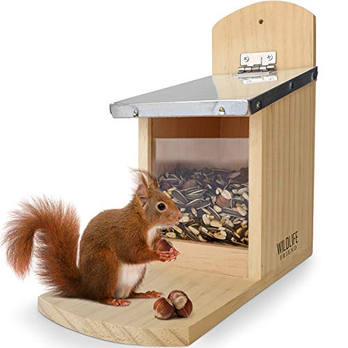 WILDLIFE FRIEND I Eichhörnchen Futterhaus - fertig montiert aus Kiefernholz & 100% wetterfest I Futterstation zum Eichhörnchen füttern, Eichhörnchenfutterhaus, Futterstelle, Futterhäuschen