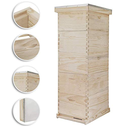 Top bees hive box for 2020