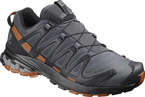 Salomon XA Pro 3D v8 GTX, Zapatillas de Trail Running para Hombre, Color: Negro (Ebony/Caramel Cafe/Black), 43 1/3 EU