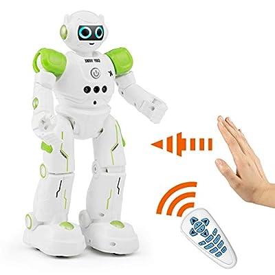 BTG Smart Remote Control RC Robot