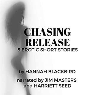 Chasing Release: A Collection of Short Erotic Stories cover art