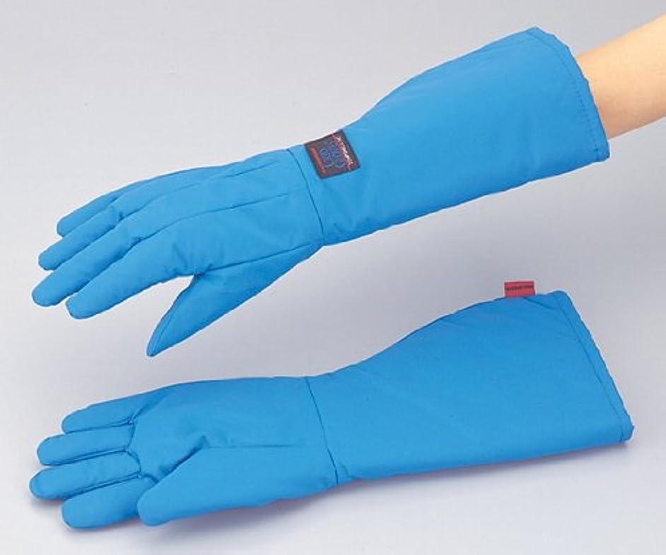 アミューズメント良性縫うアイシス1-7970-01耐寒用手袋TS-EBSWPS