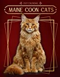 Maine Coon Cats Calendar 2022: 2022-2023 calendar animals-animal wildlife calendar July 2022 to December 2023 with high quality cute animal photos for animal lover gifts for kids