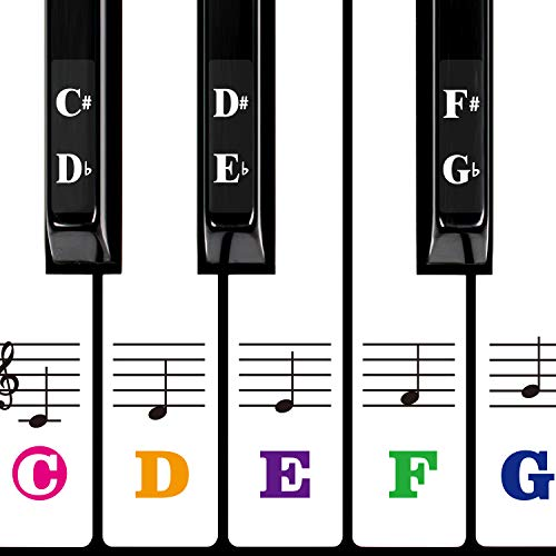 Color Piano Keyboard Stickers for 88/61/54/49/37 Key Multi-Color,Transparent,Removable Large Bold Letter Piano Stickers Perfect for Kids Learning Piano