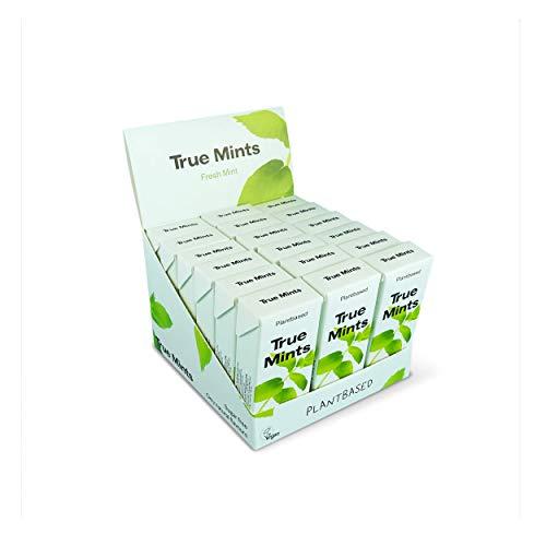 True Mints - 18er DISPLAY | FRISCHE MINZE | Pflanzliche und zuckerfreie Pastillen, 18 x 13g, 234 g