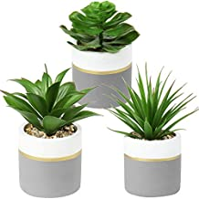 3 Pcs Artificial Succulent Plants Faux Agave Succulent Potted Fake Aloe Sansevieria Snake Plant Assorted Decorative Small Plants with Cement Pots for Home Office Desk Shelf Indoor Decor