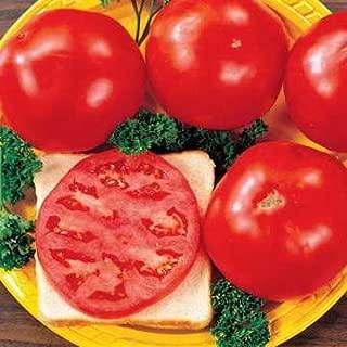 Park Seed Celebrity Hybrid Tomato Seeds