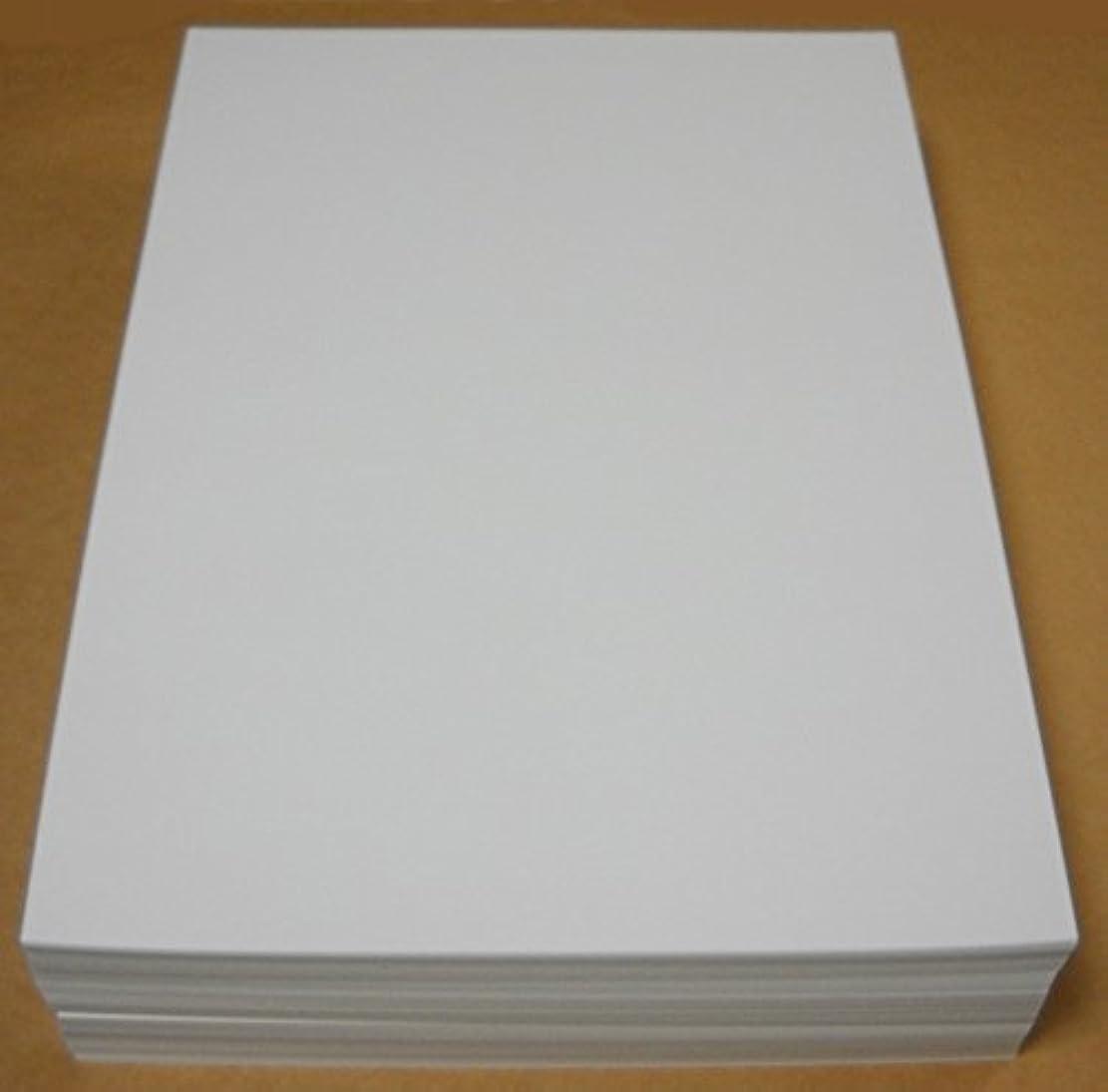 レジデンス閃光チートA4名刺用紙(インクジェット&レーザー用) 500枚入り ホワイト 名刺カッター用ケント紙 ASPA-001