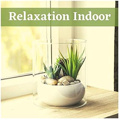 Relaxation Indoor - Zen Music for Tabletop Fountain