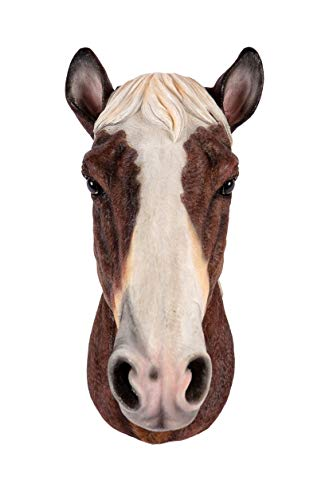 Garden Creations Horses Head Ornament Wall Mounted Chestnut Brown & White Bust Decoration Hanging Figurine Indoor or Outdoor Lawn Patio Home Decor Hall Décor Man Cave Stables XL