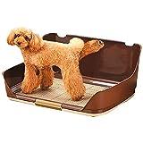 YYQQ Portable Indoor Dog igienici Holder Alta Protezione Pad, con Muro Protezione da Ogni Parte for No Leak, Spill, Keep Paws secca e Pavimenti puliti (Color : Orange, Size : S (51.2 * 40.5 * 26cm))