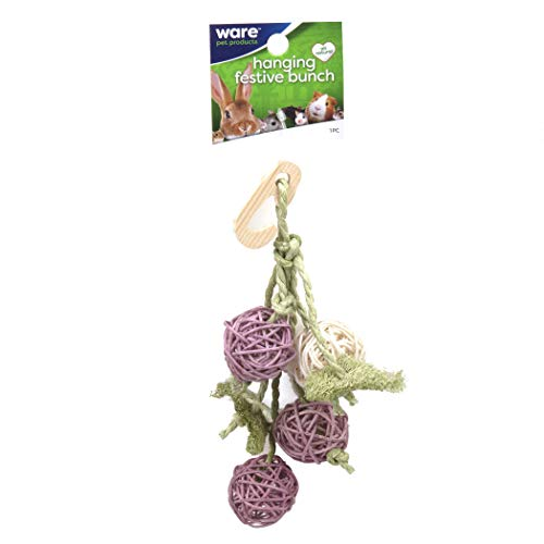Ware Pet Products Hanging Festive Bunch Chew Toy for Small Animals