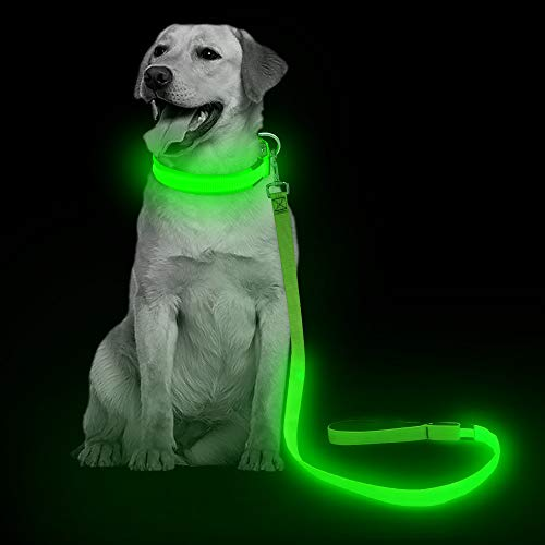 LED Dog Leash - USB Light UP Rechargeable Nylon Dog Leash - 47.2 Inch with 3 Flash Modes and Metal Buckle - Keeps Your Dog Safe All The Time (Green)