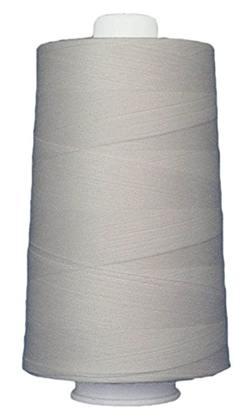 Superior Threads Omni 40wt Polyester Quilting Thread, 6000-Yard Cone (Pearl White)