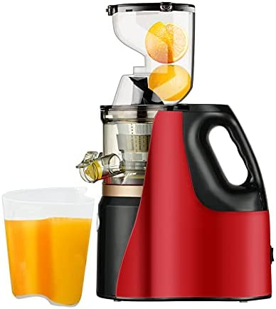 Top 10 Best cold press juicer wide chute Reviews