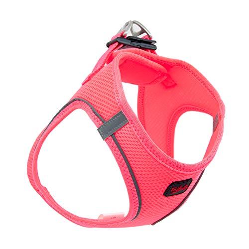 TAİLPETZ AM - HUNDEGESCHIRR (S, Neon-Pink)