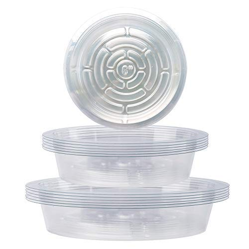 Worth Garden Platos para Macetas Plastico Transparente para Interior (18pcs)