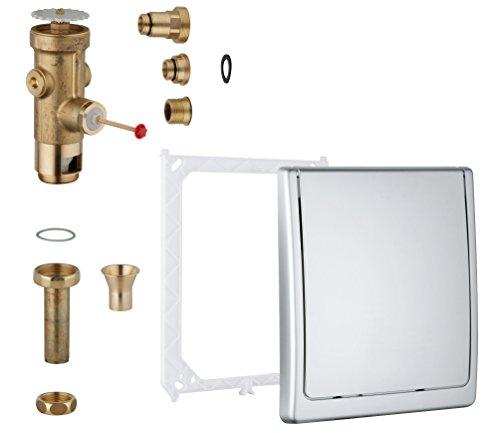 GROHE Sanitärsysteme - Druckspüler (für WC, DN 2) chrom, 42901000