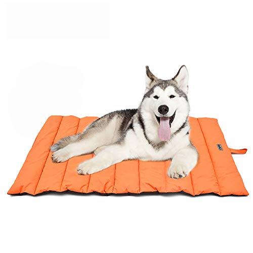 YGJT Hundebett Large/Medium Hundematte Wasserdicht für Haustiere WASSERDICHT Picknickdecke für Die Familie Multifunktionales 110x68cm Kissen für Den Innenbereich Hunde/Katzen Orange