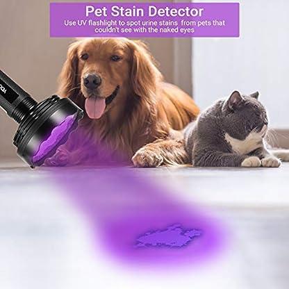 YOUTHINK UV Torch, 128 LED UV Flashlight with UV Protection Glasses, 395nm Upgraded 128 LED Flashlight Black Light Ultraviolet Lamp, Dog Cat Urine Detector, for Carpet/Floor 4