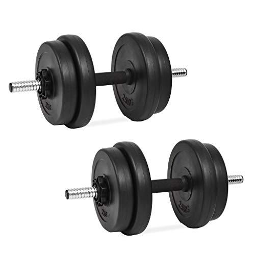 Festnight Set manubri con Pesi intercambiabili 20 kg,Maniglia Perfetta per Body Building, Pesistica Fitness, Allenamento, Palestra Casa