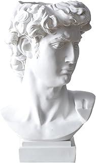 TOYANDONA Head Planter Pot Resin Succulent Planter Greek David Goddess Head Flower Pot Greek Statue Vase Human Sculpture P...