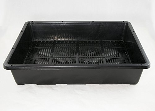 Black Plastic Tray for Propagation, Bonsai Forest/Group Planting 15'x 12'x 3'