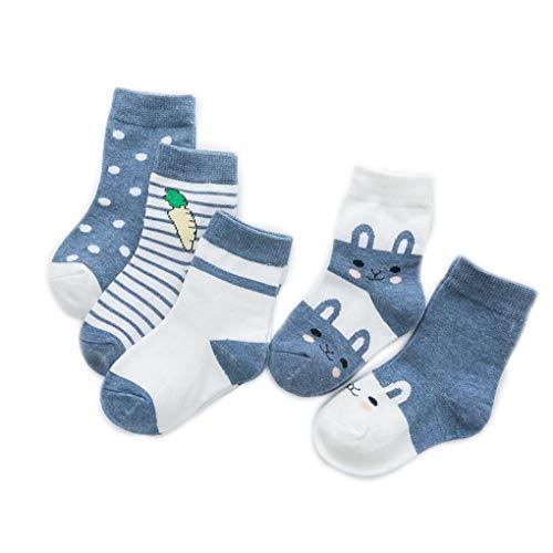 AMDUDU Chaussettes Bébé Bébé Filles Enfant 5 Paires Mignon Bébé Nouveau-né Bébé Doux Chaussette Élastique pour 0-6 6-12 12-36 mois (12-36 mois, ZZ)