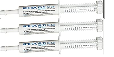 (3 Pack) Bene-Bac Plus Probiotic Pet Gel 15g Each X 3 Syringes