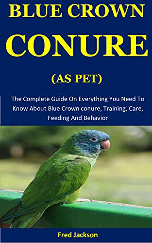 Blue Crown Conure As Pet: The Complete Guide On Everything  You Need To Know About Blue Crown conure, Training, Care, Feeding And Behavior