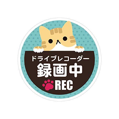 Biijo ドライブレコーダーシール 防水・耐熱 ステッカー シール 猫 ねこ ネコ サイズ直径135mm ドライブレコーダーステッカーあおり運転対策 (トラ)