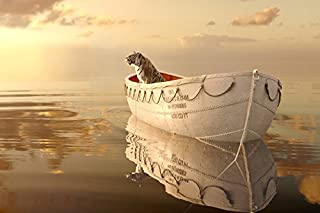 Tomorrow sunny Life of Pi Adventure Movie Film Poster Silk Fabric Print Picture Suraj Sharma Rafe Spall 24x36 inch Art Silk Poster