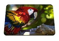 22cmx18cm マウスパッド (オウムコンゴウインコ鳥の枝) パターンカスタムの マウスパッド