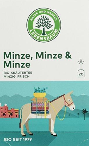 Lebensbaum Bio Kräutertee Minze, 3er Pack (3 x 30 g)