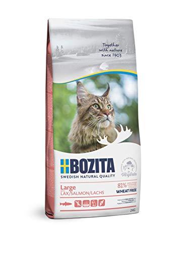 BOZITA Large Weizenfrei Lachs - Trockenfutter für erwachsene Katzen großer Rassen, 2 kg