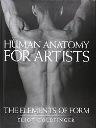 Human anatomy for artists.