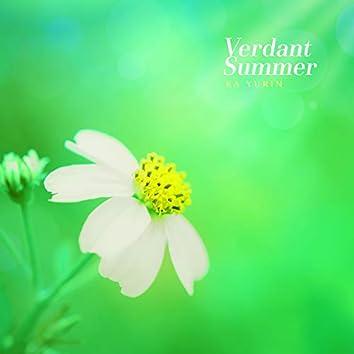 초록빛 여름