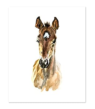 AtoZStudio A36 Horse Poster Print - Cute Baby Animal Watercolor Painting Portrait Face - Wall Art Decor Picture Artwork - Farm  8x10