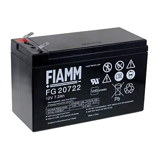 Fiamm Bleiakku FG20722 VDs, 12V, Lead-Acid