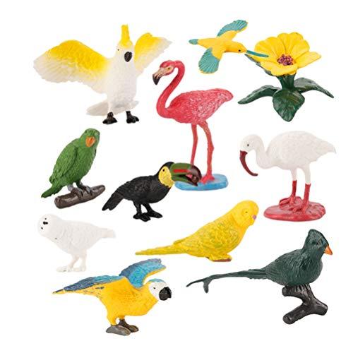 TOYANDONA Juego de 10 figuras de pájaros realistas de plástico en miniatura, simulación de pájaros, loros, garzas, ciencia, juguete educativo