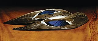 Mallard Whole Wing Pair
