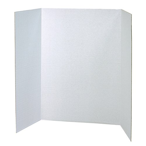 Presentation Electronic White Boards