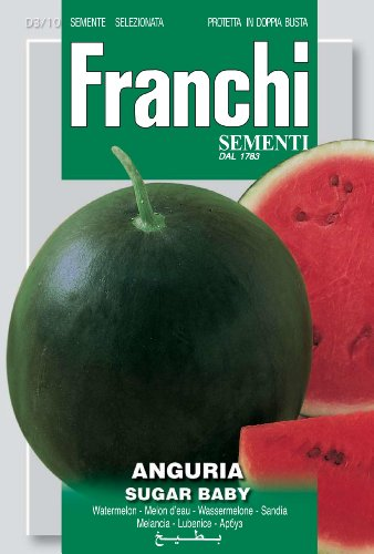 Seeds of Italy Ltd Franchi Graines de pastèque Sugar Baby