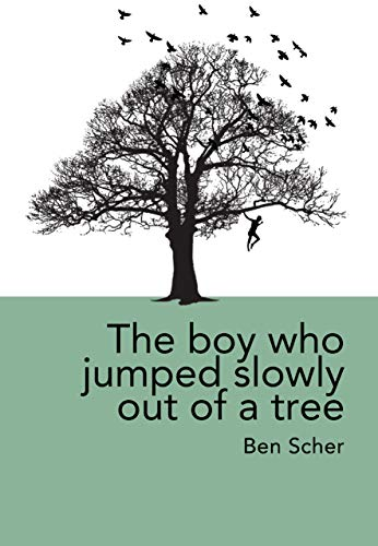 The boy who jumped slowly out of a tree: what if everyday life is weirder and more dangerous than we realise? (English Edition)